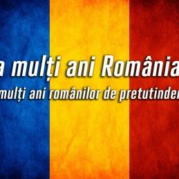 Fapte și mirări despre  românii din diasporă
